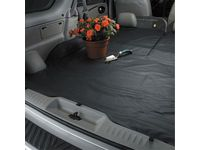 Buick Cargo Area Liner