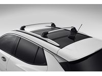Buick Encore GX Roof Carriers
